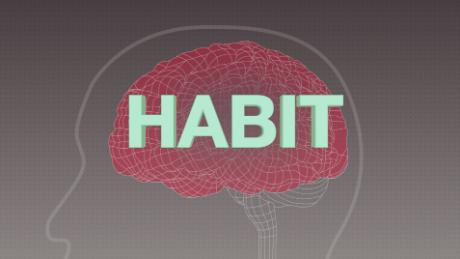 habit brain